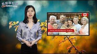 好消息!今年父母团聚移民 1月28日开放(视频)
