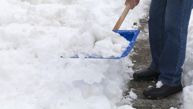 贪1千多万  他为啥在加拿大扫雪吃面条