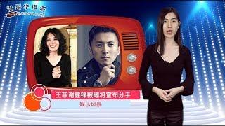 王菲、谢霆锋被曝即将宣布分手(视频)