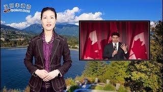正式立案!加拿大总理特鲁多或提前下台(视频)