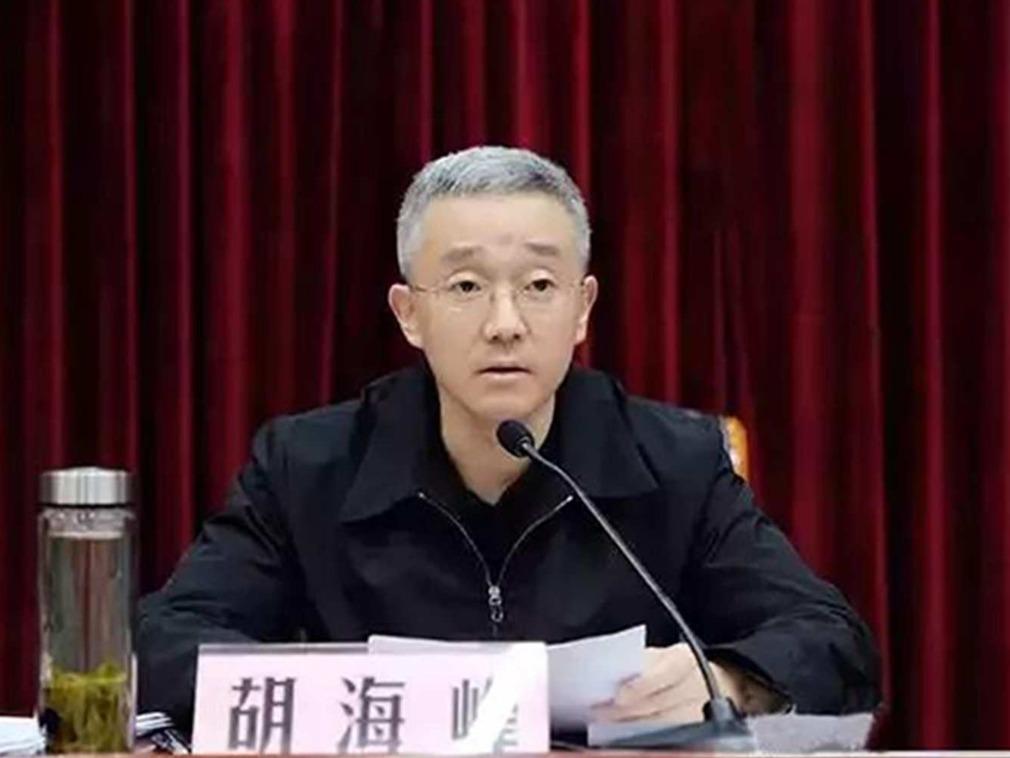 浙江最年轻市委书记 胡海峰罕见表忠习近平