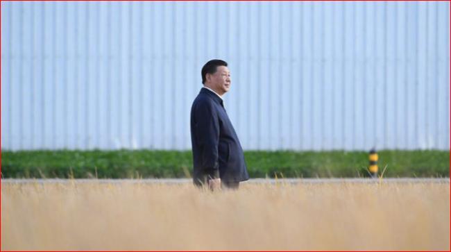 """习近平""""自力更生""""老路将令中国遭大难"""