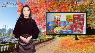 加国华人被吊销PR遣返 只因10年前的小事(视频)