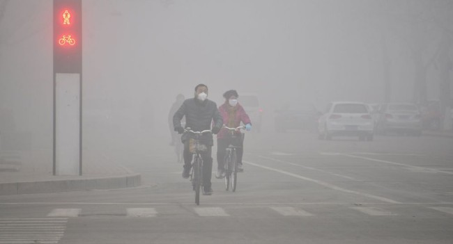 过多的臭氧    对人类可能同样有危险