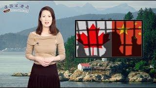 加中关系进一步恶化 BC贸易亚洲行缺中国(视频)