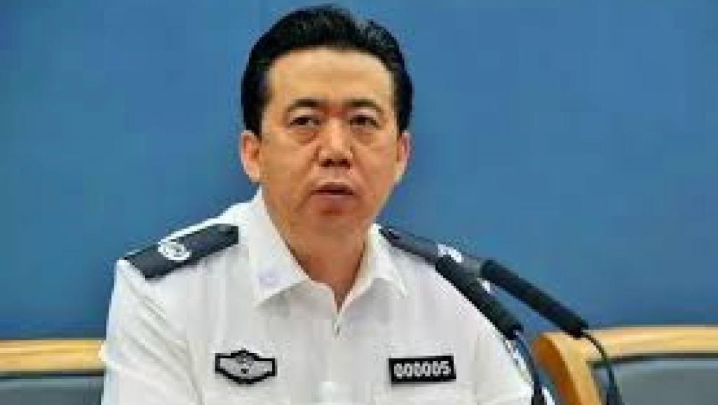 两会政协委员披露孟宏伟案最新进展
