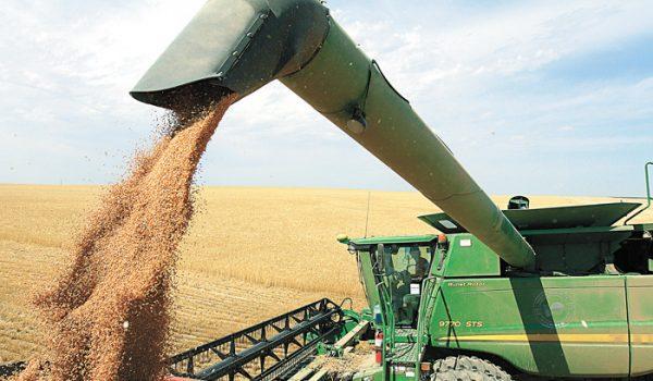 中美谷物关税WTO争端  美国胜诉