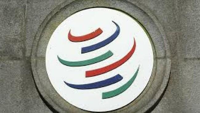 中国再遭打击 WTO判其未获市场经济地位
