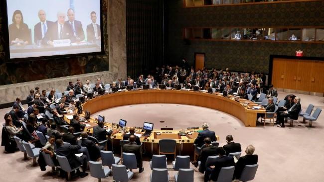 越南、爱沙尼亚等5国当选安理会成员