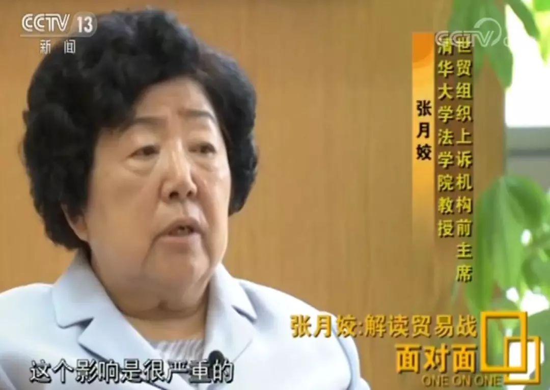 WTO上诉机构前主席:撼山易,撼中国难