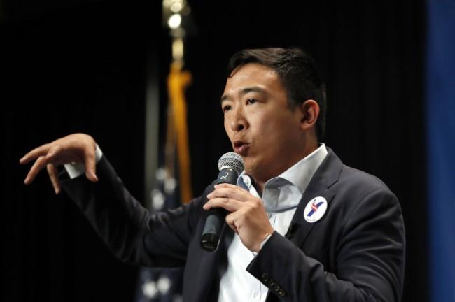 民主党总统初选20人名单出炉 华裔杨安泽入列