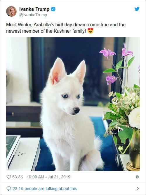 """伊万卡送给女儿一条狗 竟也被喷""""种族主义"""""""
