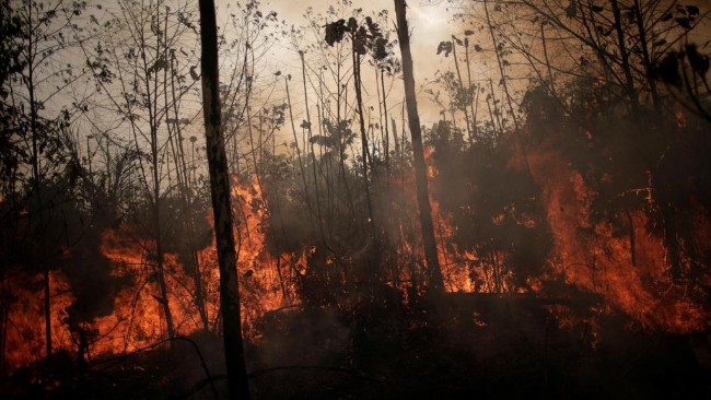 2019-08-23t225205z_1850251283_rc1481658910_rtrmadp_3_brazil-environment-wildfires.jpg