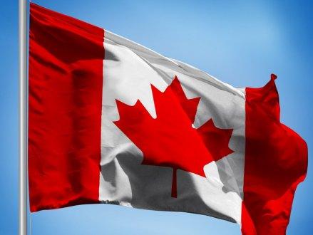 刚刚,加拿大政府向中国正式提出这个要求