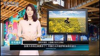 加拿大农场主真要凉了?中国要从俄进口油菜籽