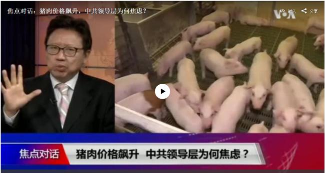 焦点:猪肉价格飙升,中共领导层为何焦虑?