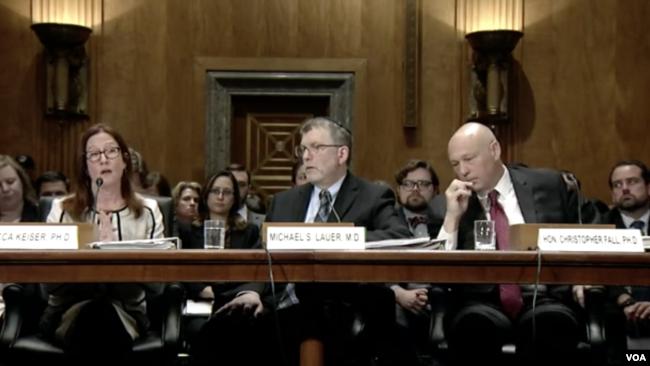 """美国联邦科研机构代表星期二(2019年11月19日)在参议院常设调查小组委员会(Senate Permanent Subcommittee on Investigations)就""""确保美国研究机构不受中国人才引进计划的入侵""""的听证会上作证。"""