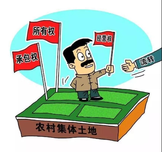 WeChat Image_20191126160155.jpg