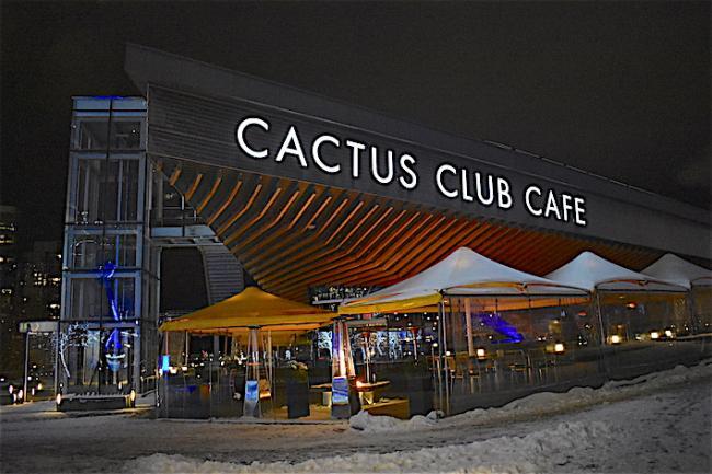 cactus01.JPG