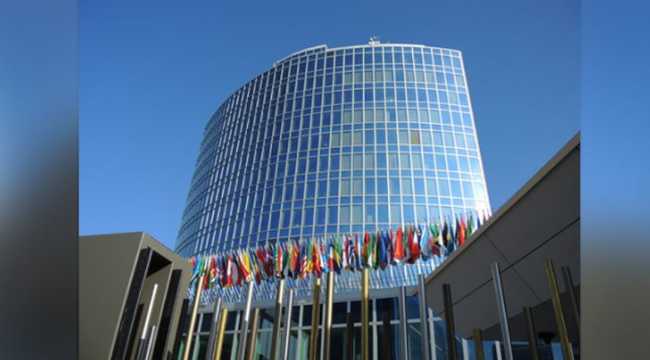 为竞逐WIPO总干事 中国和美国又杠上了
