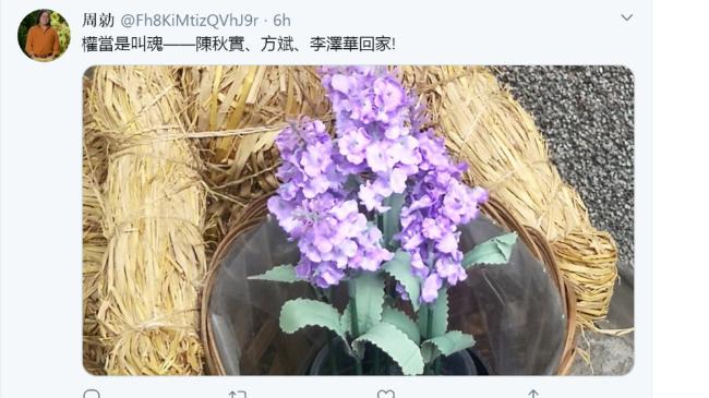 zhouqing-chenqiushi-fangbin-lizehua.png